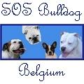 SOS BULLDOG BELGIUM ASBL
