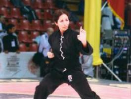 kung fu style hung gar à Villeurbanne