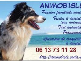 ANIMOB'ISLE Pension Familiale Canine et Services Animaliers à L'Isle sur la Sorgue