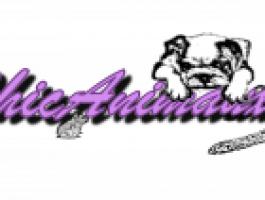 La boutique ChicAnimaux en ligne - animalerie